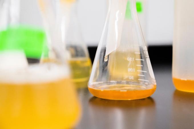 Cinética química e Equilíbrios químicos