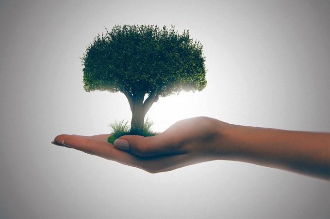 [quiz] Teste- você entende tudo de Ecologia?
