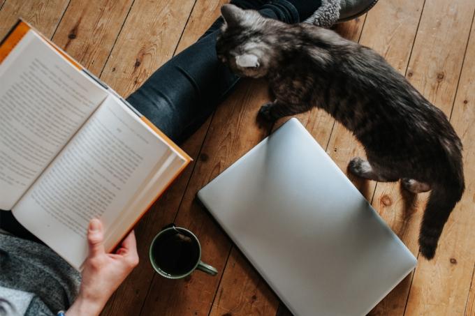 como criar um hábito de leitura