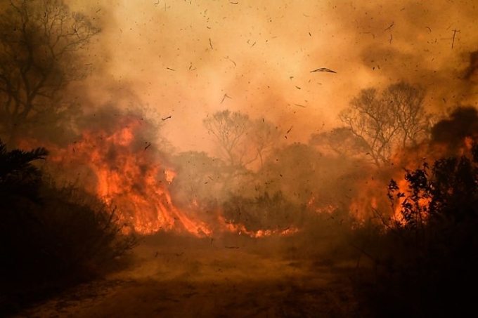 Pantanal On Fire In Brazil