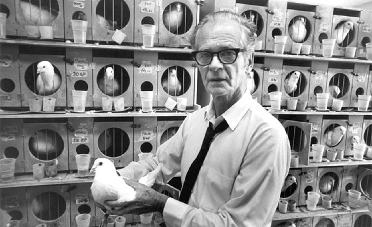 Burrhus Frederic Skinner, conhecido como B. F. Skinner (1904 - 1990). Psicólogo behaviorista, inventor e filósofo americano