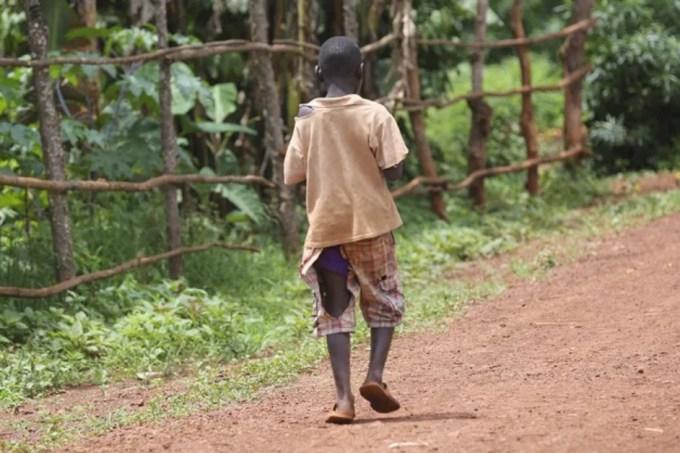 A pandemia intensificou problemas estruturais da sociedade em relação ao acesso ao alimento – Foto Flickr – Rádio USP